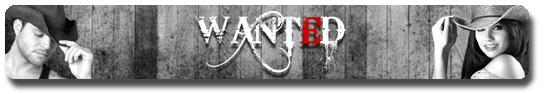 Vign_LOGO_BANNIERE_WANTED