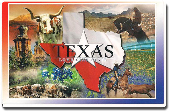 Vign_Texas_Postcards_003