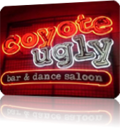 Vign_coyote-ugly-saloon-las1-e1271363485103